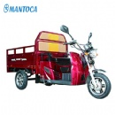 Handicapped CargoTricycle: MTC110D-02